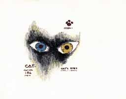 Cats Eyes by John Cataldi
